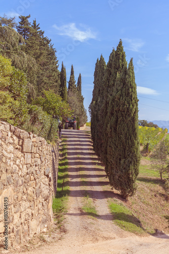 Papiers peints Toscane Country road with cypresses on the hills