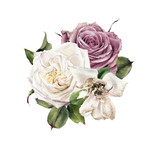Bouquet of roses, watercolor, can be used as greeting card, invitation card for wedding, birthday and other holiday and  summer background. - 180765112