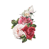 Bouquet of roses, watercolor, can be used as greeting card, invitation card for wedding, birthday and other holiday and  summer background. - 180765161