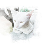 White cat sit on floor with tree background. Watercolor painting (retouch). - 180831708