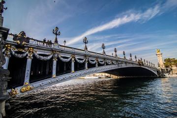 Paris, France - November, 2017. Alexandre III Bridge located in Paris, France.