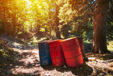 Toxic waste barrels in the forest - 180870772