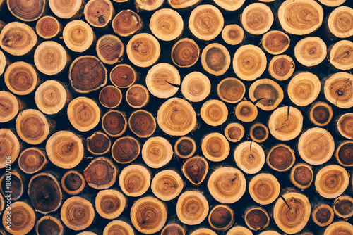 Stacked wood logs as texture - 180870706
