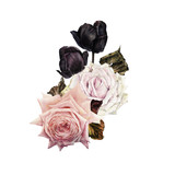 Bouquet of roses, watercolor, can be used as greeting card, invitation card for wedding, birthday and other holiday and  summer background. - 180874730
