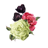 Bouquet of roses, watercolor, can be used as greeting card, invitation card for wedding, birthday and other holiday and  summer background. - 180875901