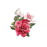 Bouquet of roses, watercolor, can be used as greeting card, invitation card for wedding, birthday and other holiday and  summer background. - 180875944