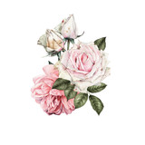 Bouquet of flowers,  can be used as greeting card, invitation card for wedding, birthday and other holiday and  summer background - 180877757
