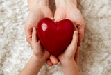 Close up of mother and child hands holding red heart shape.  - 180888314