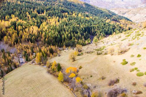 Foto op Aluminium Beige Vue aerienne sur les montagnes, la forêt et la rivière. Les Alpes françaises.