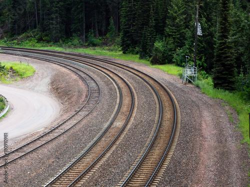 Papiers peints Voies ferrées Railroad tracks in the forest