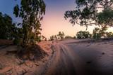Piste qui mène au désert de Lompoul au Sénégal - 180926592
