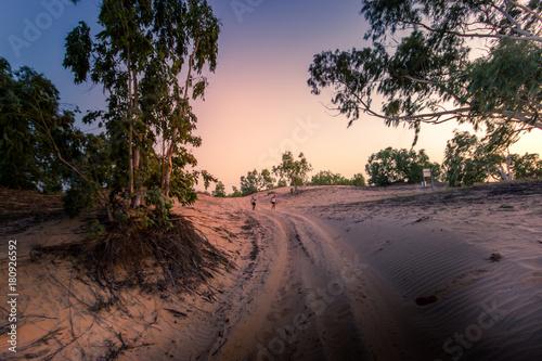 In de dag Weg in bos Piste qui mène au désert de Lompoul au Sénégal
