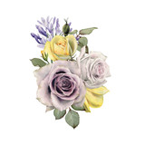 Bouquet of roses, watercolor, can be used as greeting card, invitation card for wedding, birthday and other holiday and  summer background. - 180967597