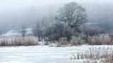 mglisty zimowy poranek - 180983924