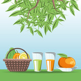 basket with citric fruits and glass with juices over blue background vector illustration