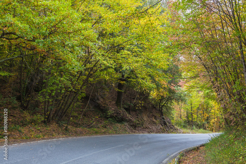 Deurstickers Toscane The curved road through autumn forest in the Tuscany mountains, Italy