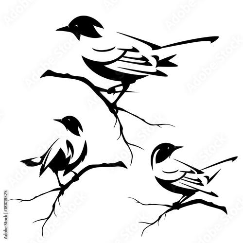 male-ptaki-siedza-na-galezi-drzewa-czarno-bialy-zestaw-projektu-wektor