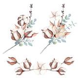Fototapety Watercolor cotton branch flower print decoration.