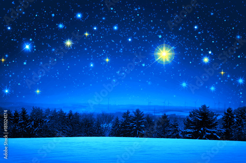 Christmas sky and winter fir trees.