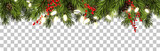 Christmas border with fir branches and pine cones