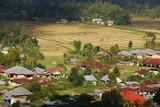 Campagne typique près de Ruteng, île de Florès, Indonésie - 181031144