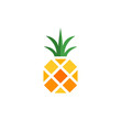 home pineapple logo - 181038178