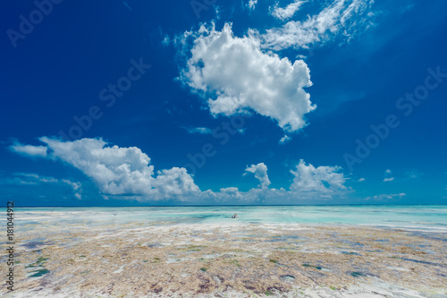 Foto op Aluminium Zanzibar Zanzibar, Tanzania