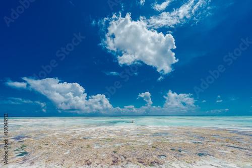 Fotobehang Zanzibar Zanzibar, Tanzania