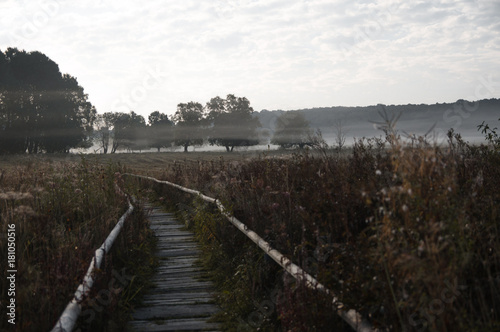 Foto op Plexiglas Grijze traf. Morgen Nebel