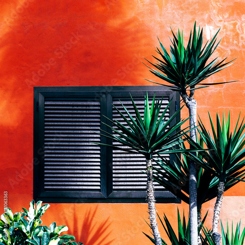 Deurstickers Canarische Eilanden Palm trees on the background wall. Tropical location. Travel Minimal