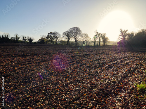 Papiers peints Cappuccino Autumn countryside morning,Northern Ireland