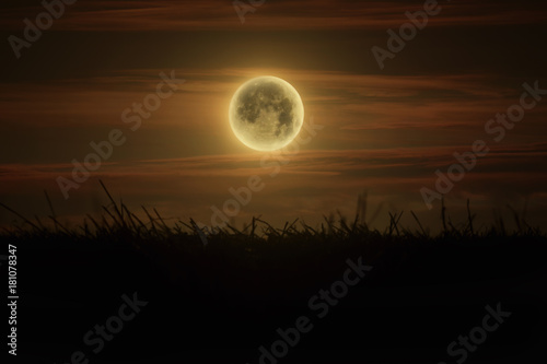 shining fullmoon on field night photograpy