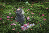 Maple leaves fall around the statue. - 181129303