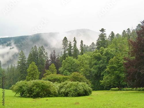 Foto op Plexiglas Khaki Landscape in Transylvania, Romania