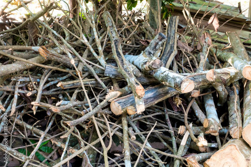 Deurstickers Brandhout textuur Dry branches for wood burning in winter