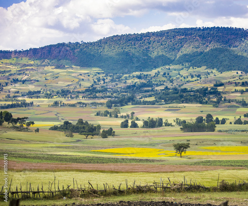 Fotobehang Colorful fields of crops in Ethiopia