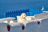 Curious white lapdog on white terrase in Oia, Santorini, Greece - 181175317