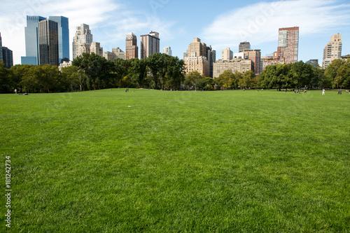 Foto Murales Central Park in New York