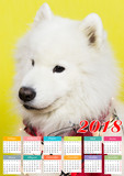 Calendar in the year of the dog. Calendar for 2018 which depicts a brunette girl and a big white dog with a red scarf and a cap