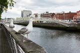 Travel in Ireland. Dublin, Ha'penny bridge