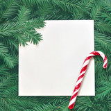 Creative background of pine branch with white paper card. New Year and Merry Christmas Concept. - 181265703