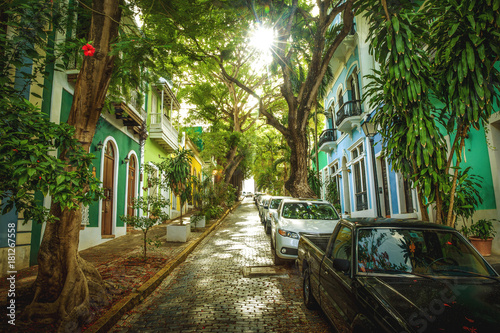 Beautiful street full of trees in old San Juan, Puerto Rico Poster