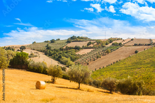 Aluminium Oranje Italy Landscape View with Clouds on Blue sky, Italian Fields with Hay Bales