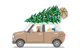 Car loading Christmas tree on the roof,Side view  -  Mother and son with dog