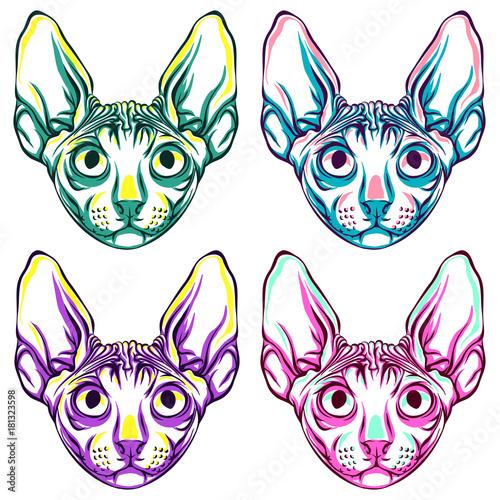 In de dag Pop Art Cats. Pop-art style. Set of different colors.