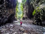 Bras de la Plaine river in La Reunion island - 181323926