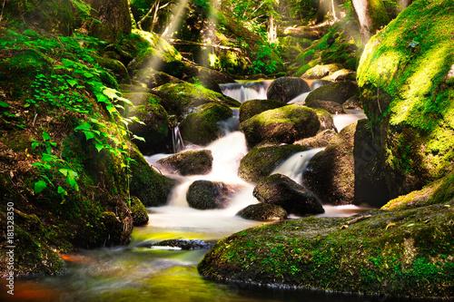 Wasserfall im Wald - 181328350