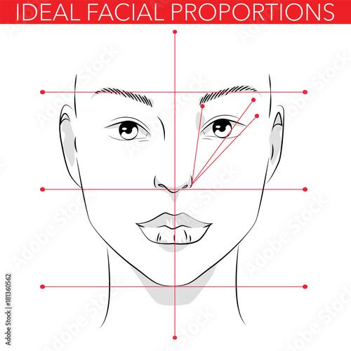 Ideal Facial Proportions Buy Photos Ap Images Detailview