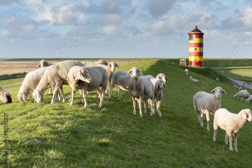 Leinwanddruck Bild Deutschland,Niedersachsen,Krummhörn, der Leuchtturm von Pilsum.