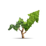 tree - 181391123